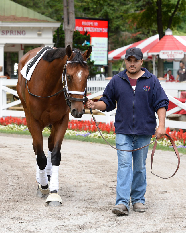 Chandelier Stakes 2014 Springboard To Bc Juvenile Fillies Win