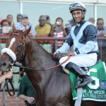 Main Sequence Horse