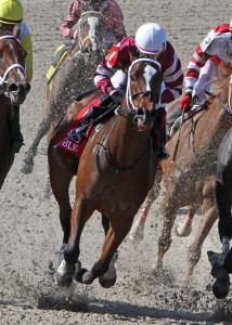 Pocahontas Stakes 2014