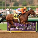Beholder Zenyatta Stakes 2014