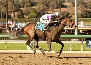 Frontrunner Stakes Breeders Cup Kentucky Derby