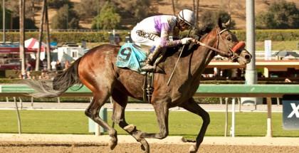 Frontrunner Stakes 2014