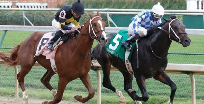 Lucky Player Horse