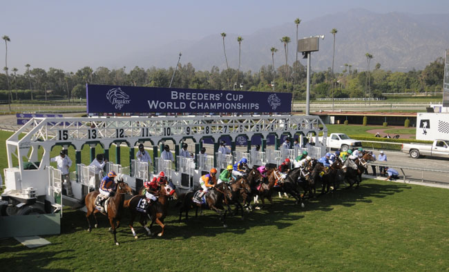 championship game online breeders cup results today