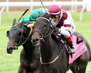 Crown Queen Horse