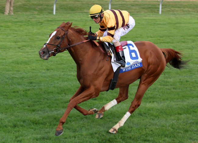 Wise Dan Wins Shadwell Turf Mile Photos Amp Video