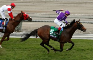 Breeders' Cup Juvenile Turf 2014 Hootenanny