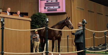 Keeneland November Sale 2014
