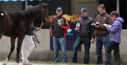 Keeneland November Sale 2014 Book 6