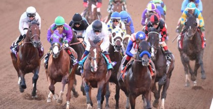 Breeders' Cup Classic 2014