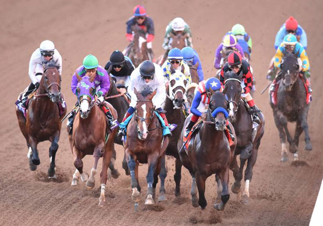 Bayern Wins 2014 Breeders Cup Classic With Martin Garcia