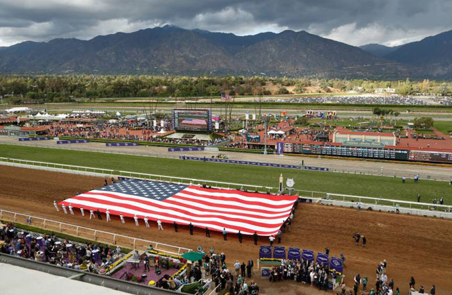 Breeders Cup 2014 Results And Highlights