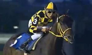 Uruguayan Triple Crown 2014 Sir Fever