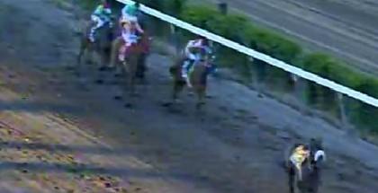 Il Campione Throws Jockey