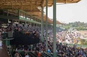 La Brea Stakes 2014