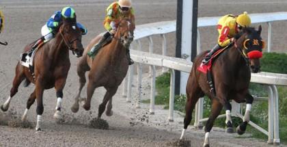 LeComte Stakes 2015
