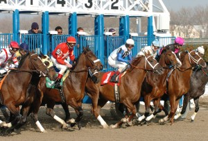 Jerome Stakes 2015