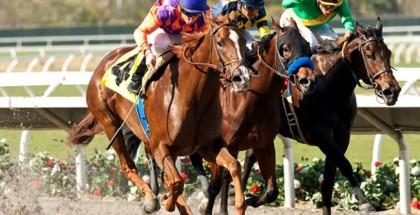 Las Virgenes Stakes 2015