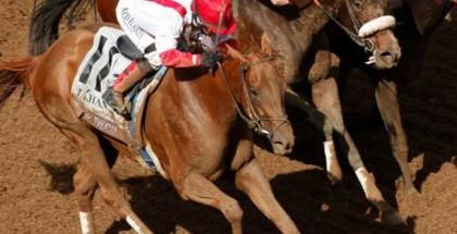 Top Decile Horse