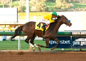 Santa Anita Saturday Picks and Plays February 14, 2015