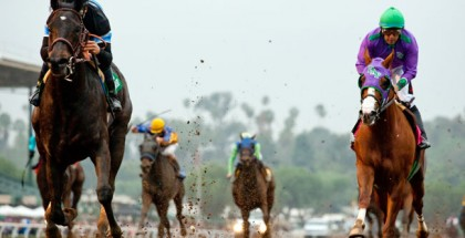Shared Belief California Chrome