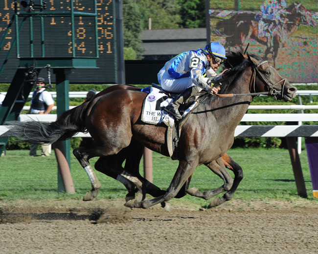 Stallion Feature The Claiborne Legacy Blame