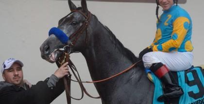 Gotham Stakes 2015