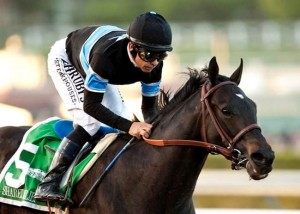 Shared Belief Horse