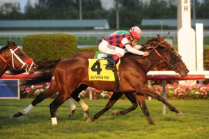 Spiral Stakes 2015