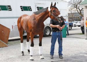Kentucky Derby 2015 News