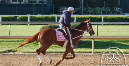 Kentucky Oaks 2015 I'm A Chatterbox