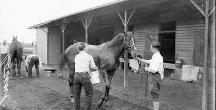 Kentucky Derby Sires