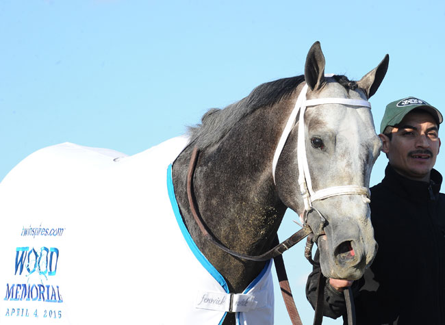 Godolphin S Frosted Looks Good In Wood Memorial Stakes