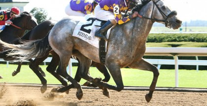 Horse racing News and Results April 4, 2015