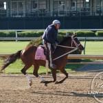 Kentucky Oaks 2015 Odds