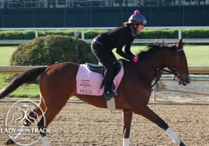 Kentucky Oaks Odds and Post Positions
