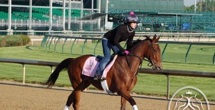 Kentucky Oaks Picks & Plays