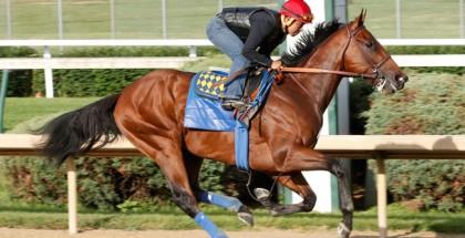 American Pharoah Belmont Stakes 2015