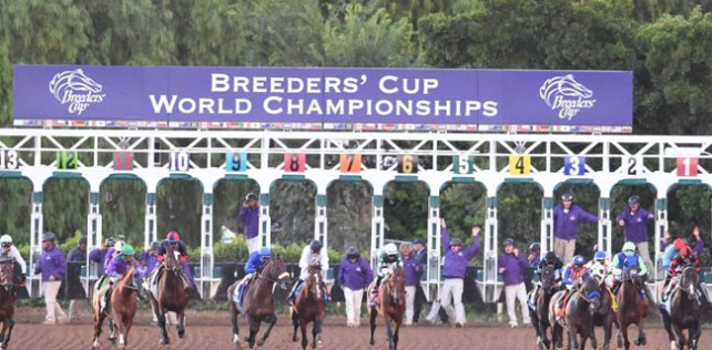 """Breeders' Cup Challenge 2020 """"Win & You're In"""" Races"""