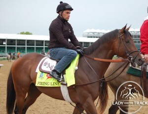 Preakness Stakes 2015 Firing Line