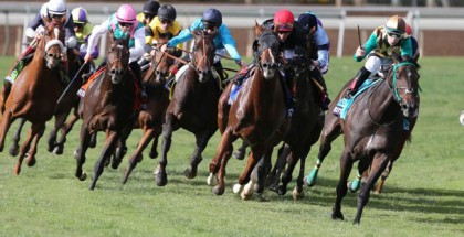 Hardest Core Man o' War Stakes 2015