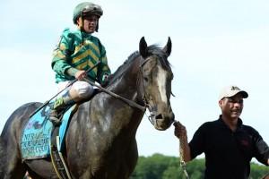 Honor Code Horse