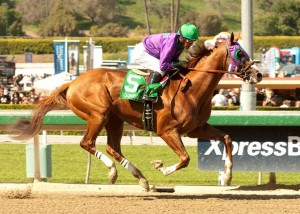 California Chrome Primed to Upset Prince of Wales's