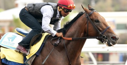American Pharoah Workout Del Mar