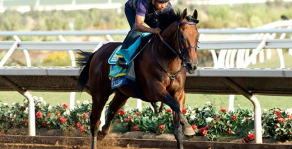 American Pharoah Works Del Mar