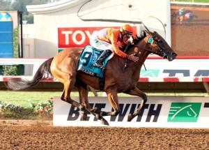 Beholder Horse