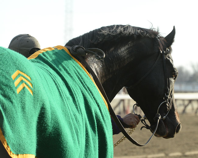Honor Code To Answer Two Turn Question In Whitney