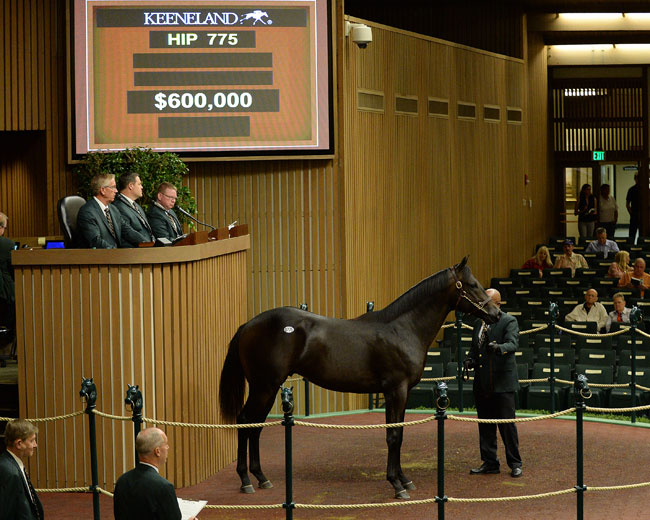 Keeneland September Yearling Sales Week Two