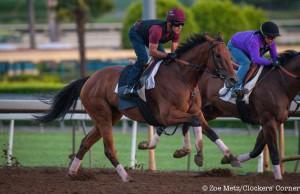 Zenyatta Stakes 2015
