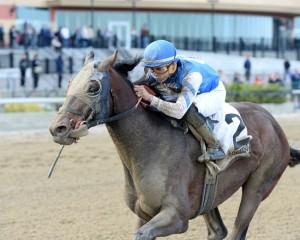 Effinex Horse